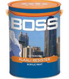 son-lot-boss-exterior-alkali-resister