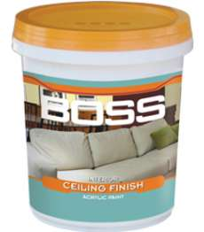 son-noi-that-boss-lan-tran-sieu-trang-interior-ceiling-finish