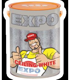 son-nuoc-noi-that-expo-ceiling-white-interior
