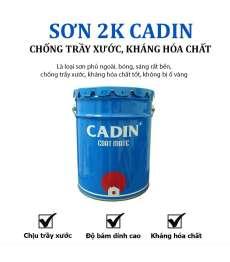 son-2k-cadin